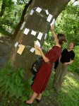 Poet Tree4